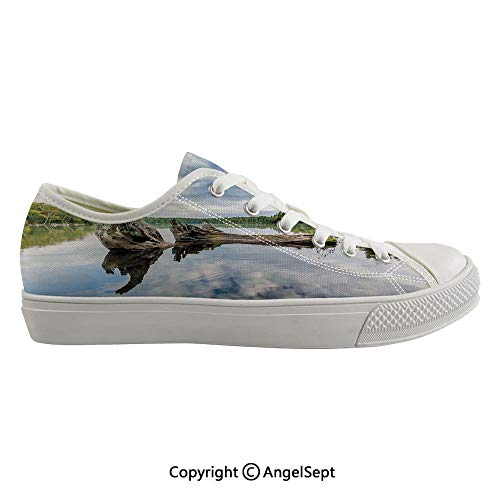(Durable Anti-Slip Sole Washable Canvas Shoes 15.74inch Remains of a White Cedar Tree Trunk in Lake and The Sky Digital Image,Green Light Grey Flexible and Soft Nice)