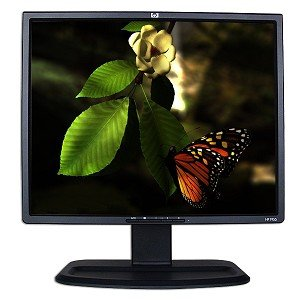 19'' HP L1955 DVI 720p Rotating LCD Monitor w/USB Hub (Black) - Rotates to Portrait or Landscape View! by HP