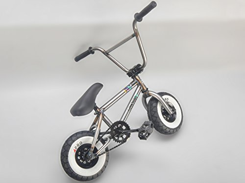 Rocker Bmx Mini Bmx Bike Irok Raw Rkr Coaster Model Lifestyle