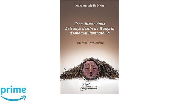 le roman létrange destin de wangrin pdf