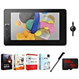 Wacom Cintiq Pro 24'' 4k Ultra HD Creative Pen & Touch w Pro Pen 2 (DTH2420K0) with Elite Suite 18 Standard Editing Software, Stylus Pen with Pocket Clip & 64GB MicroSDXC Memory Card