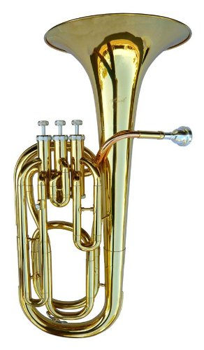 NEW BRASS B Flat BARITONE Horn W/CASE by other