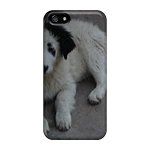 For Iphone 6 Phone Case Cover Hard Back With Bumper Bulgarian Dog