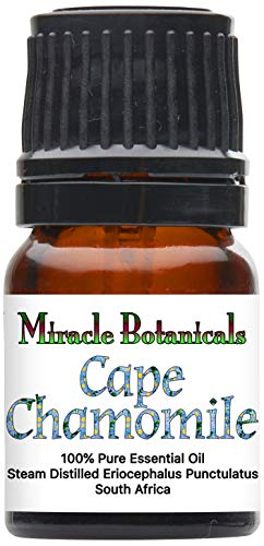 Miracle Botanicals Wildcrafted Cape Chamomile Essential Oil - Indigenous South African 100% Pure Eriocephalus Punctulatus - 2.5ml (Indigenous South African Plants Used For Medicine)