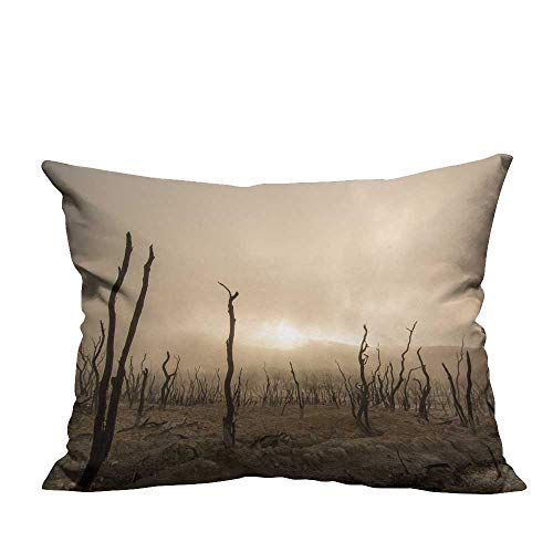 YouXianHome Home DecorCushion Covers A Barren Wasteland Comfortable and Breathable(Double-Sided Printing) 19.5x26 ()