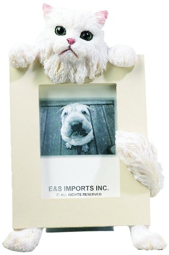 Amazon.com : E&S Pets 35316-4 Small Cat Frames : Pet Memorial ...