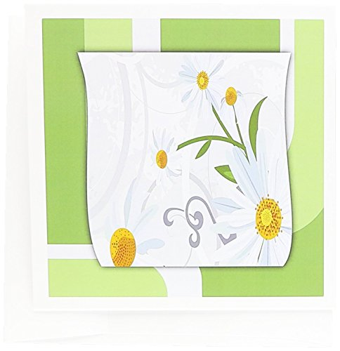 3dRose Daisy Decoration - Greeting Cards, 6 x 6 inches, set of 12 (gc_149962_2)