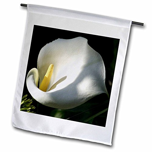 3dRose fl_46839_1 Morning Has Broken Calla Calla Lily Callas Lilies Easter Lily Weddings Majestic Garden Flag, 12 by 18-Inch