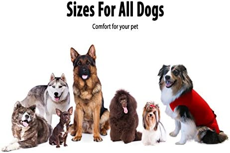 A Simple Solution to an Everyday Problem Surgi~Snuggly Disposable Dog Diapers Keeper for Male and Female Dogs Fits Puppies and Small Dogs to Adult Dogs P//P-MS-DK
