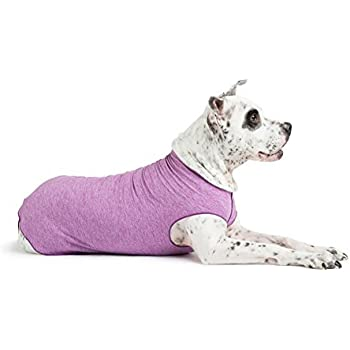 Gold Paw Sun Shield Dog Tee - T-Shirt for Canines - UV Protection, Pet Anxiety Relief, Wound Care - Protects Against Foxtails, Aids Alopecia - Machine Washable, All Season - Size 6 - Violet