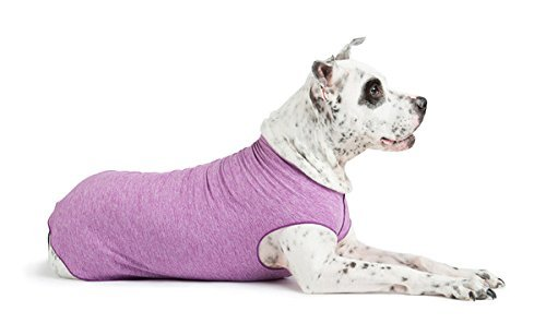 Gold Paw Sun Shield Dog Tee - T-Shirt for Canines - UV Protection, Pet Anxiety Relief, Wound Care - Protects Against Foxtails, Aids Alopecia - Machine Washable, All Season - Size 26 - Violet]()