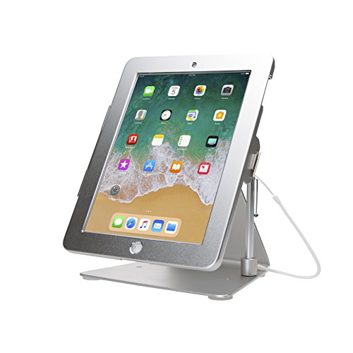 CTA Digital PAD-DASS Desktop Anti-Theft iPad Stand, Silver