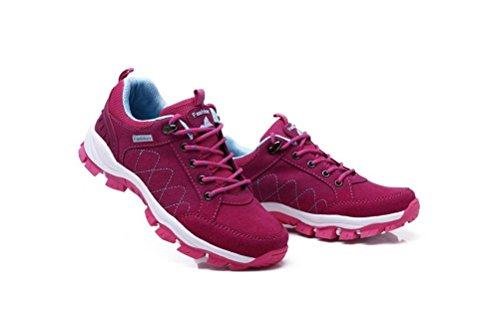 Shoes Rose Trail Running Walking Women Always Casual Hiking Men's Sneakers women Pretty Shoes x0pWqCwP