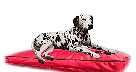 65x90x20 cm, Negra Lavable Sof/á para Perros Grandes Impermeable Cama de Perros Gris Colores Rojo Azul Marr/ón o Negro.