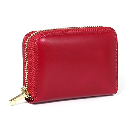Women's Credit Card Wallet,RFID Blocking Cards Case,Leather Multi Card Holder Safe Travel Wallets/Credit Card Organizer Wallet/Protector/Small Purse for Ladies (Red)