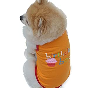 Small Dog Shirt, Voberry Fashion Pet Puppy Dog Cat Clothes Boy Girl Birthday Vest T Shirt (M, Orange)
