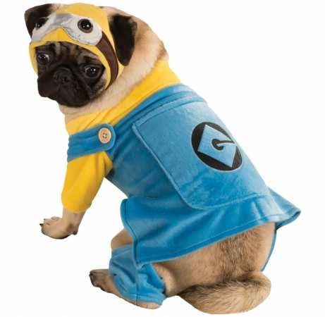 Rubie's Minion Dog Costume Large -