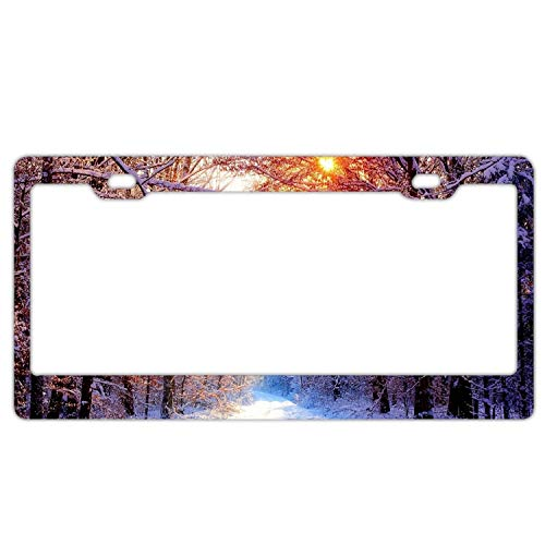 Zogpemsy Snowy Forest Scene Home,Bathroom and Bar Wall Decor Car Vehicle License Plate Metal Tin Sign Plaque