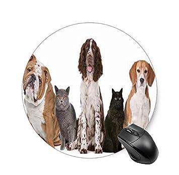 Gaming Mouse PadAlmohada de Fotos Personalizada para Mascotas Tu ...