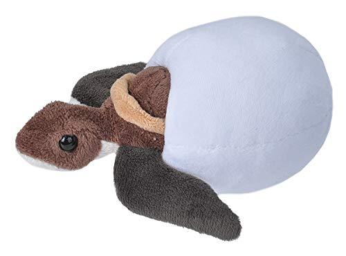 Wild Republic Loggerhead Sea Turtle Plush, Stuffed Animal, Plush Toy, Kids Gifts, Hatchlings 6 Inches