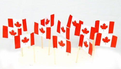 Canada   Canadian Flag Toothpicks (100) (Canada Pick)