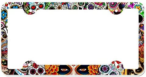 luckmx Unique Popular Design Plate Frame Custom Dead Hair Sugar Skull Lady with Roses in Retro Ink Style License Plate Metal Car Tag 12 x 6 Inch