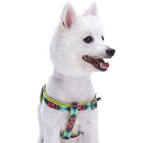 Blueberry Pet 2 Colors Soft & Comfy Step-in Vintage Tribal Pattern Padded Dog Harness, Chest Girth 23.5 - 29.5, Extravagant Green, M/L, Adjustable Harnesses for Dogs