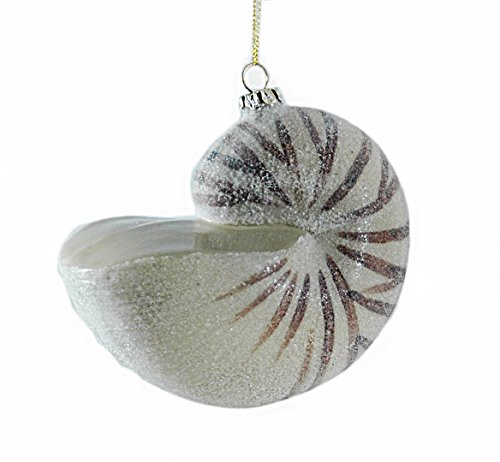 419fSsy8xaL Amazing Seashell Christmas Ornaments