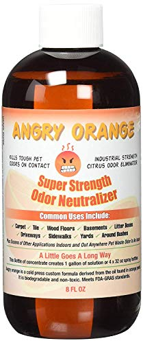 Angry Orange Pet Odor Eliminator for Dog and Cat Urine, Makes 1 Gallon of Solution for Carpet, Furniture and Floor Stains (Best Way To Get Rid Of Cat Urine)