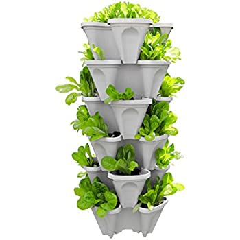 Amazon Com Mr Stacky 1305 Hg 5 Tier Stackable Strawberry Herb