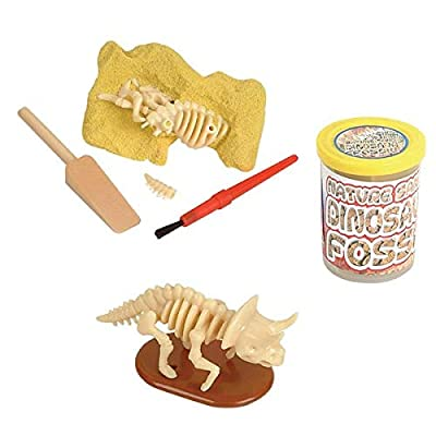 Rhode Island Novelty Dinosaur Fossil - Nature Sand Dino Dig Stocking Stuffer - 1pc: Toys & Games