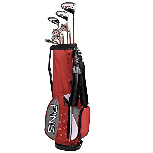 golf clubs irons ping - 8
