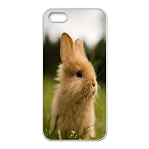 For Ipod Touch 4 Phone Case Cover Cute Rabbit In Grass Hard Shell Back White For Ipod Touch 4 Phone Case Cover 337894