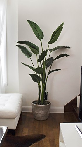 One 5 foot Artificial Silk Bird of Paradise Palm Tree Potted Plant 3