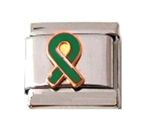 Green Ribbon Italian Charm - Stylysh Charms Ribbon Organ Donor Green Enamel Italian 9mm Link NC206