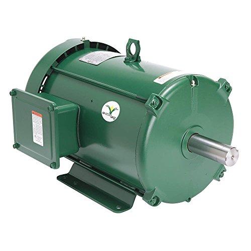 (Leeson / Regal Beloit - 141145.00 - 7-1/2 HP General Purpose Farm Duty Motor, 3-Phase, 1765 Nameplate RPM, 230/460 Voltage, Frame 213T)