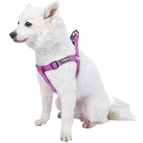 - Blueberry Pet 19 Colors Step-in Classic Dog Harness, Chest Girth 16.5