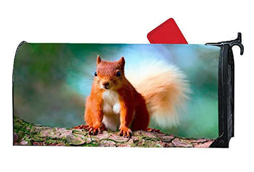 Cute Red Squirrel Mailbox Cover Magnetic Personalized Animal MailWrap Mailbox Makeover Cover Vinyl with Full-surface Magnet on (Personalized Mailbox Covers)