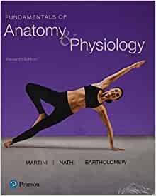 Martini and nath fundamentals of anatomy and physiology download