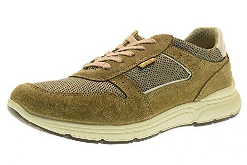 Uomo 79044 Tortora Soft Basse Enval Sneakers Scarpe 00 K1J3c5uTFl