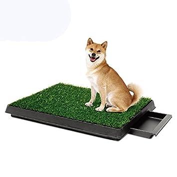 Pet Online Perro de tocador cajón césped wc artículos para mascotas