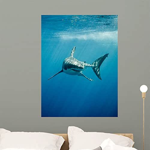 Wallmonkeys Pacific Great White Shark Wall Mural Peel and Stick Animal Graphics (36 in H x 27 in W) WM368241