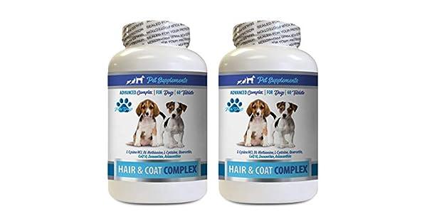 Amazon.com: Suplementos para mascotas y nutrientes LLC ...