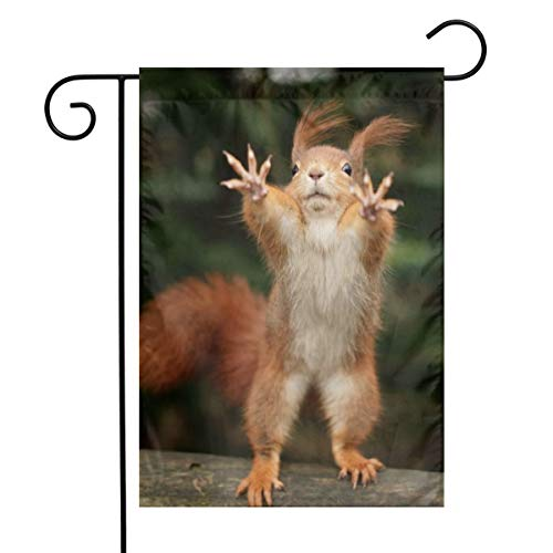 Squirrel Funny Animal Garden Flags Home Indoor Outdoor Welcome Decorations Waterproof Polyester Yard Decorative For Game Family Party Banner