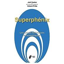 Superphenix: Les acquis techniques et scientifiques (French Edition)