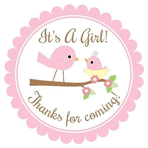 It's A Girl Baby Shower Labels, Mommy and Baby Bird Shower Stickers, Baby Bird Favors (36 count)
