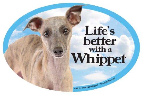 Whippet Dog Magnet - Whippet Oval Dog Magnet for Cars