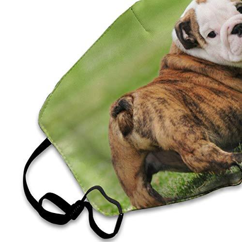 BLongTai Mouth Cover Mask English Bulldog Puppy Fashion Anti Dust Half Face Masks