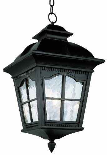Trans Globe Lighting 5426 BK Outdoor Briarwood 23.75