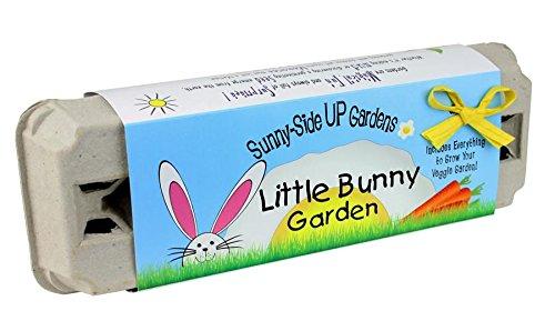 Bunny Garden (Backyard Safari Company Sunny-Side Up Gardens, Little Bunny Garden)